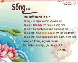 images hinhbaiviet y nghia cuoc song 5
