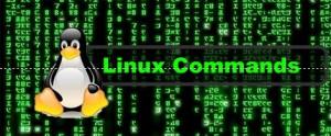 linuxcommand
