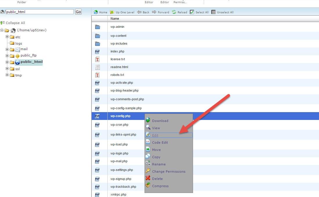 laivanduc huong dan doi hosting domain cho wordpress 12 min