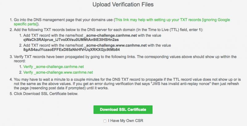 Manually Verify Domain DNS 2 800x409