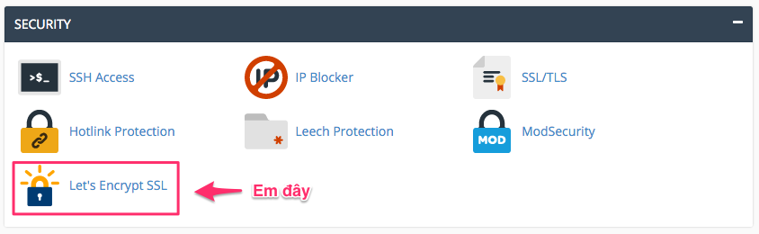 Section SECURITY trong cPanel